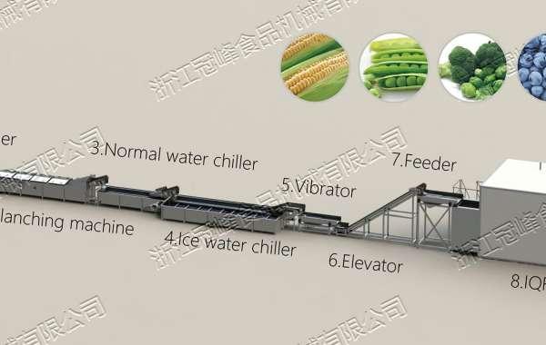 GuanFeng Frozen Solution - Freezing Production Line