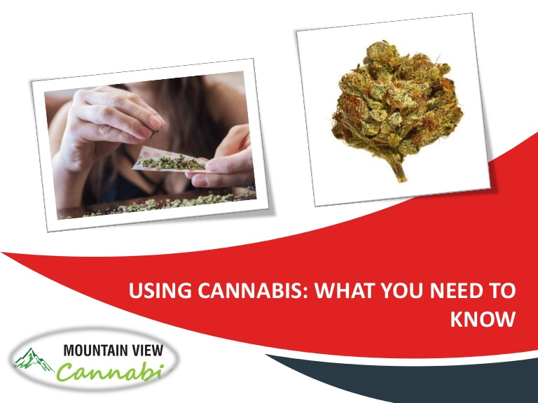 Using cannabis what you need to know