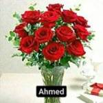 Ahmed Ahmed Profile Picture